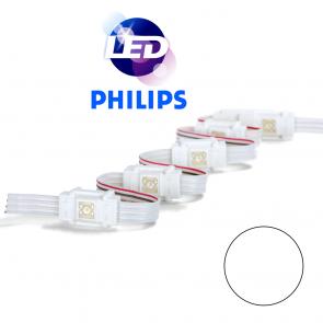 PHILIPS Witte waterdichte LED module met 1 power LED MP W8000
