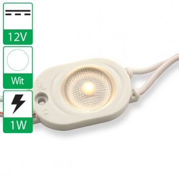 Semi-waterdichte LED module wit 6500K